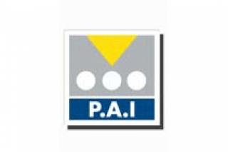 PAI 2